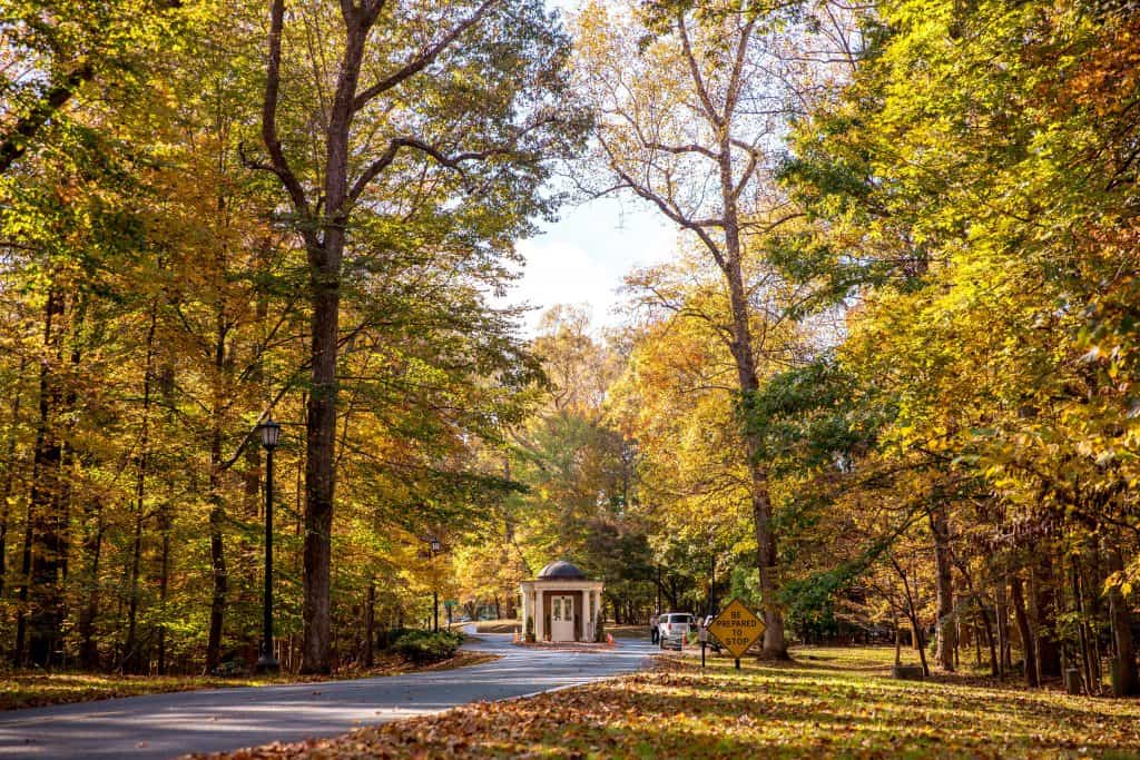 Campus Fall Entrance