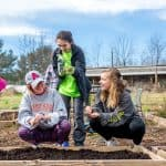 students working in the community garden