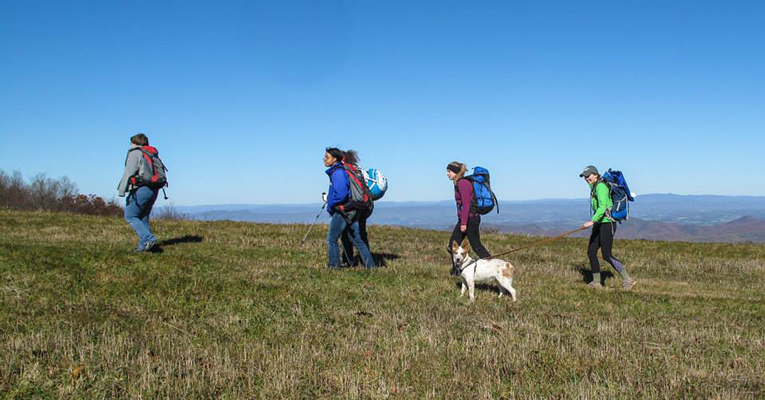 Hikers cross a high meadow