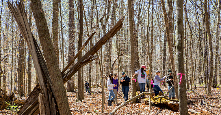 Environmental science students in forest