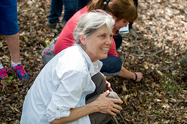 Joan Maloof delights in what she discovers in mature woods, including among the leaf litter.