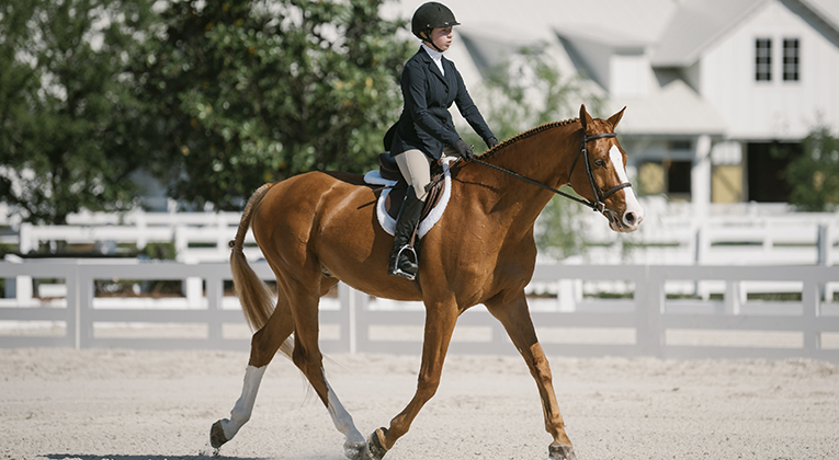 Aoife Magner '19 riding Sweet Briar's Aate