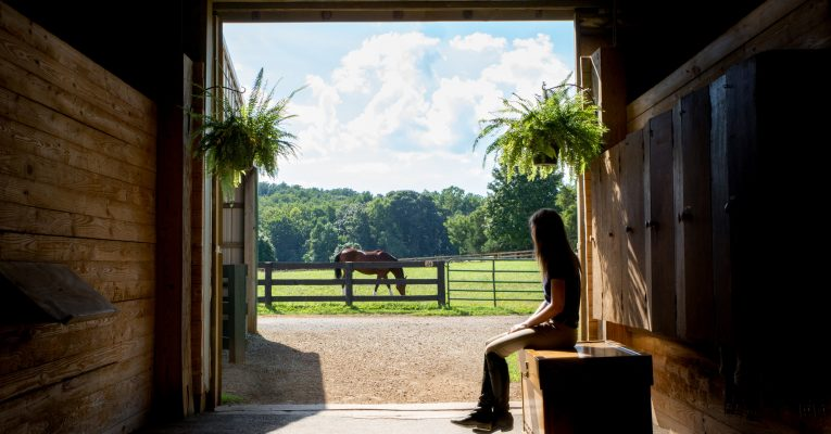 Sweet Briar stables