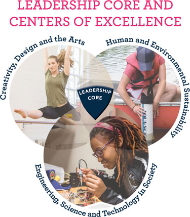 Leadership Core and Centers of Excellence