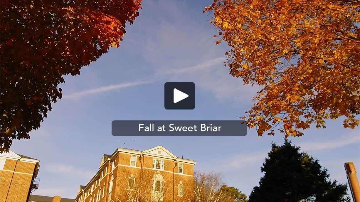 Fall at Sweet Briar